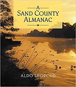 Aldo Leopold (1887-1948) was a scientist, philosopher and environmentalist at the University of Wisconsin. He is best remembered for A Sand County Almanac, a best-selling and highly influential book of essays on the land around his home in Sauk County, Wis.