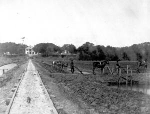 Farm laborers, rice fields and the main house at Orton plantation, ca. 1900.