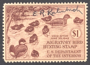 Kalmbach was also a respected wildlife artist. He created this image for a migratory bird hunting stamp issued in 1941.