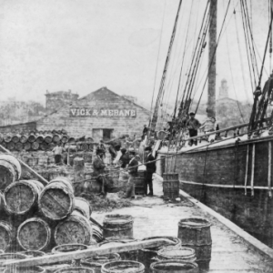 Turpentine barrels being loaded on a German ship in Wilmington, N.C. in the early 1870s.
