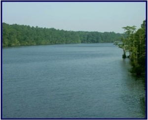 Chowan River from the Hwy. 11 bridge at Winton, N.C.