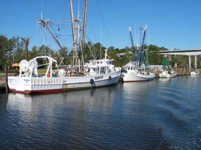 Shrimp trawlers docked on the Intracoastal Waterway at Goose Creek Island. In the distance, you can see the new high-rise bridge that connects the island with the mainland of Pamlico County. Courtesy, Dan Allen