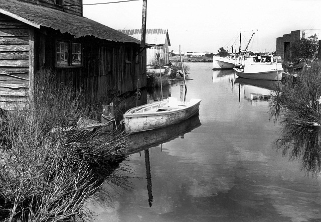A typical Hyde County scene-- Far Creek, in Engelhard, 1976. By Rick Doble