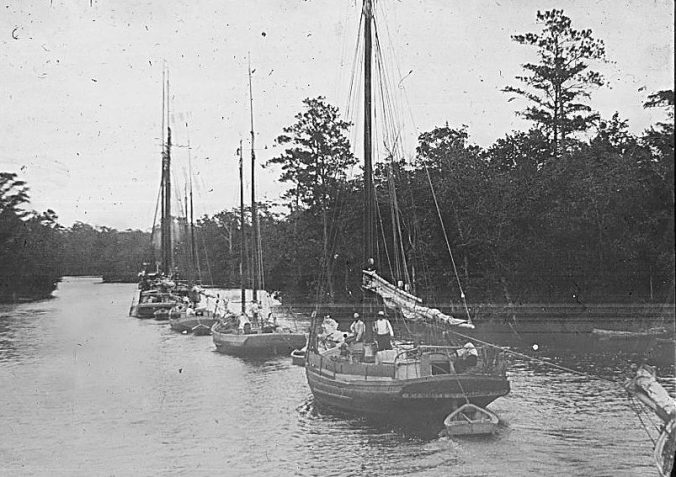 A steam tug, unseen, tows a line of wooden sailing vessels, probably freight carriers, on the Albemarle & Chesapeake Canal, 1901. Image by Albert Ross, USN. Courtesy, Linda Garey