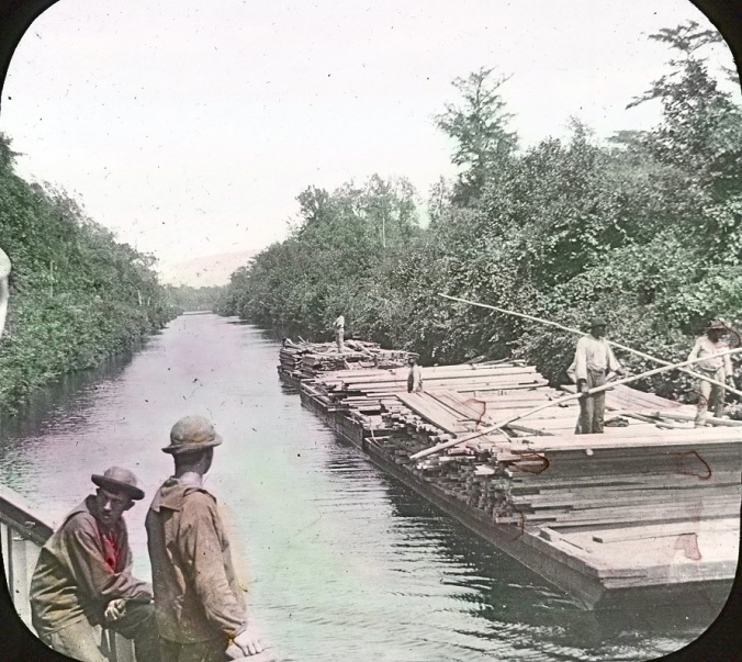The lighthouse tender <em>Violet</em> passes a pair of lumber barges on the Albemarle &amp; Chesapeake Canal, 1901. Image by Albert Ross, USN. Courtesy, Linda Garey