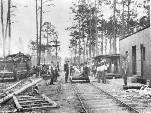 Dinner time at a lumber camp in Jones County, N.C., 1901. Hundreds of such logging camps—some more humble and ramshackle than this one, others a bit more homey—were built on North Carolina's coastal plain in the late 1800s and early 1900s. Courtesy, Forest History Society