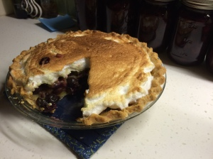 My daughter Vera's grape hull pie. My great-grandmother's grape hull recipe lives on. Photo by David Cecelski