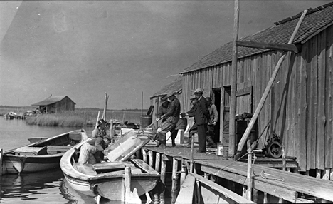 Men heaving a block of ice onto or off of a shad boat at the Globe Fish Company's outposts on Roanoke Island, ca. 1935-40. Photo by Charles A. Farrell. Courtesy, State Archives of North Carolina