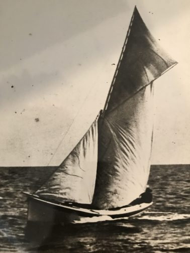 Shad boat flying its goose wing on Albemarle Sound ca. 1900. Courtesy, State Archives of North Carolina