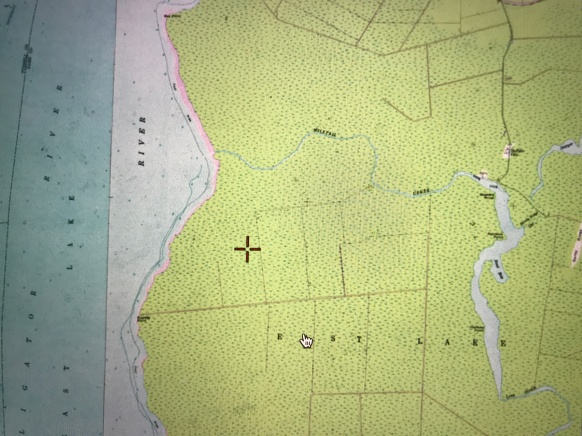 USGS topo map featuring the western end of Mill Tail Creek as it flows into the Alligator River in Dare County, N.C. The shaded area indicates wetlands. Mill Tail Creek was probably the single most important source of juniper (Atlantic white cedar) for boat building anywhere on the NC coast.