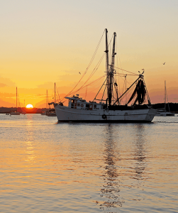 Shrimp trawler in waters off Fernandina Beach, Fl. Courtesy, AmeliaIslandLiving.com