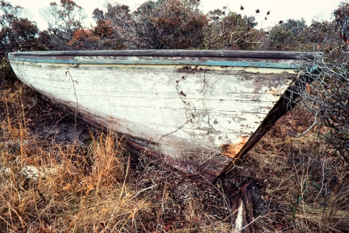 Hatteras Island photographer Mike Halminski found his friend John Herbert's shad boat in the Rodanthe marshes in 1985. Herbert told him that he won many race on Pamlico Sound with the boat in his younger days. Photo courtesy of Michael Halminski at Michael Halminski Photography
