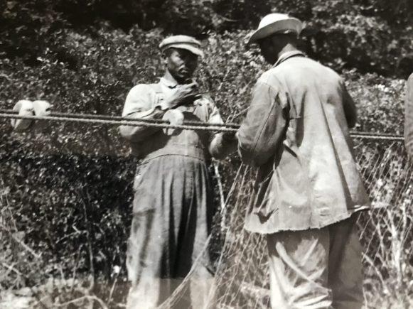 Fishermen either mending or hanging a haul seine at one of the last shad and herring fisheries, possibly Avoca in Bertie County, on Albemarle Sound, ca. 1930. Courtesy, N.C. Collection, UNC-Chapel Hill Library