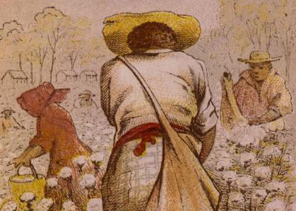 Cotton pickers, 1800s. Courtesy, Library of Congress. Found in Sven Beckert's Empire of Cotton: A Global History (2015)