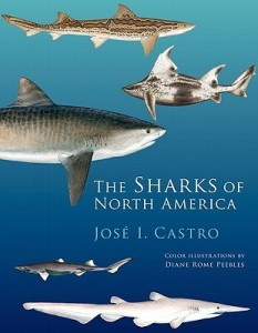 Dr. Castro was kind enough to assist me in understandings Russell Coles' place in the history of shark science. A marine biologist at the National Marine Fisheries Service (part of NOAA), he specializes in the biology and history of sharks. His book, The Sharks of North America, is a standard work in the field.
