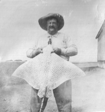 Russell Coles with a spotted eagle ray (Aetobatus narinari), Cape Lookout, N.C., ca. 1910-15. Courtesy, Walter Coles, Sr., Coles Hill, Va.