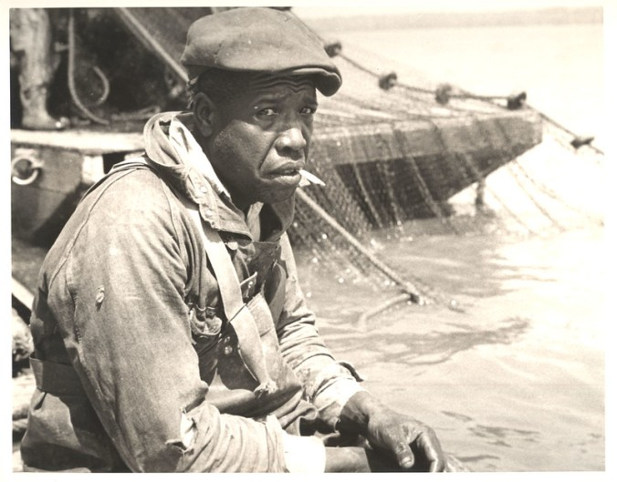 Unidentified fisherman at an unidentified fishery, probably on or near the Albemarle Sound, ca. 1937-39. Photo by Charles A. Farrell. Courtesy, State Archives of North Carolina