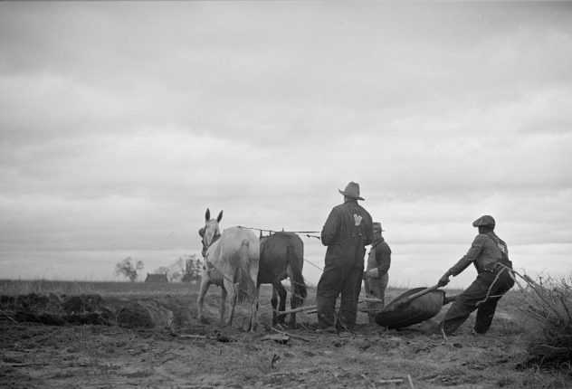 Getting ready for spring planting, North Carolina (exact locale unknown), ca. 1935. Courtesy, Library of Congress
