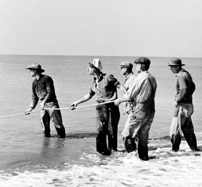 Mullet fishing at Bald Head Island, N.C., 1938. Photo by Charles A. Farrell. Courtesy, State Archives of North Carolina