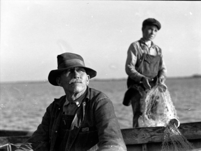"""A father and son gill net fishing from a pair of skiffs on the New River, 1937-41. The Atlantic Ocean was just a few miles to the south, but in Sneads Ferry the estuarine waters of the New River were home. In the early 1930s Ginny Richardson told me, """"just about everybody"""" worked on the river. She said that her family did go out to the inlet on occasions though, such as in the early spring when they gathered a mustardy, wild green that she called """"sea kale"""" (I know it as """"sea rocket"""") among the dunes. Photo by Charles A. Farrell. Courtesy, State Archives of North Carolina"""